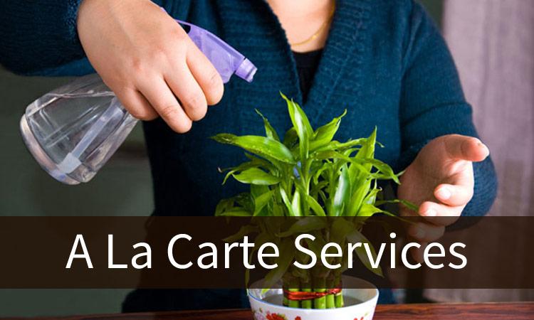 Big Canoe A La Carte and Additional Services