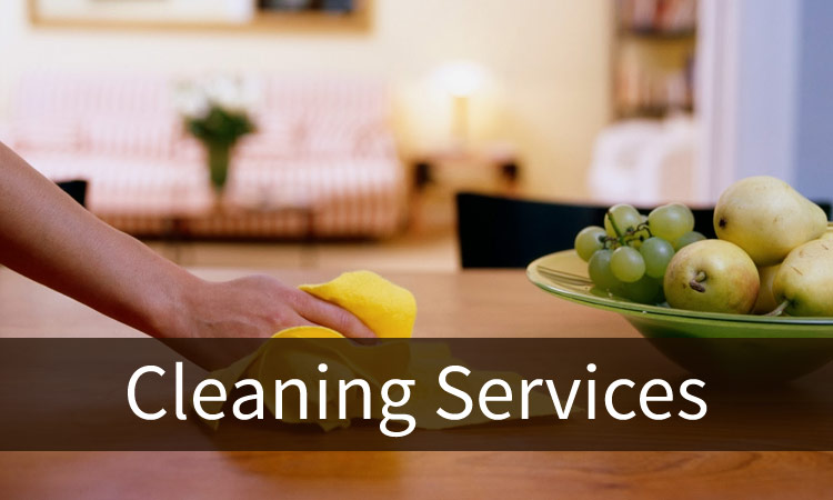 Big Canoe Cleaning Services